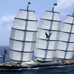 Le Maltese Falcon