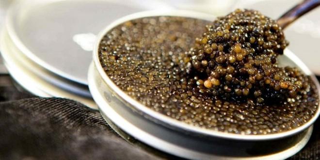choisir son caviar