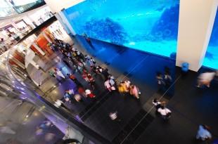 Le Dubaï Mall accueille l'un des plus grands aquariums du monde.