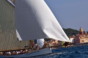 Les Voiles de Saint-Tropez se déroulent en ce moment même jusqu'au 6 octobre.
