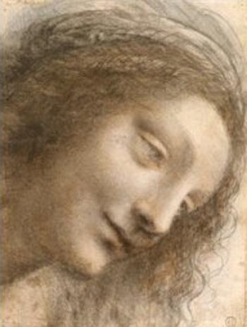 Le Metropolitan Museum of Art De Vinci