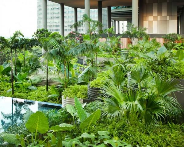 jardins suspendus du Park Royal Singapour