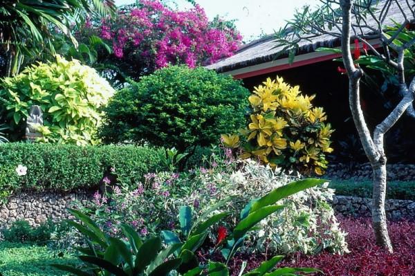 Associations éclatantes des couleurs et des formes sur les terrasses du Bali Hyatt Sanur