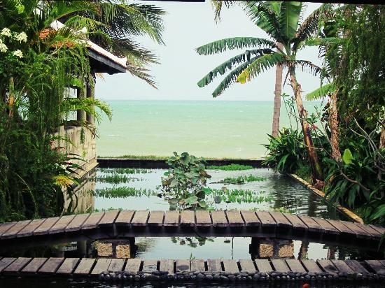 bassins de l'Ana Mandara