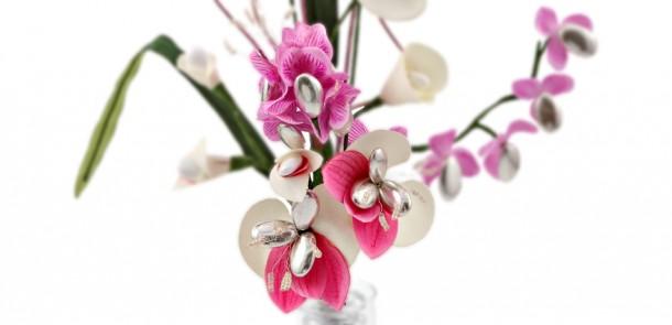 Fleurs dragées