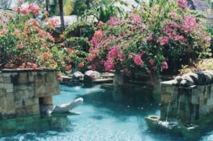 Jardins paysagers des hôtels en Asie
