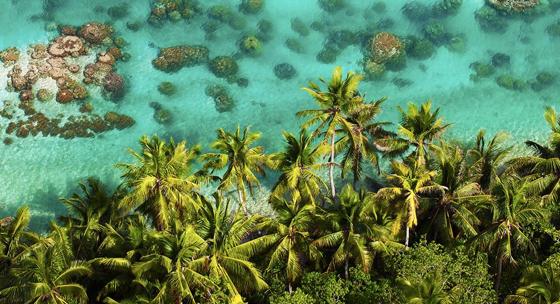 L'Atoll de Tetiaroa encercle un lagon aux eaux limpides et à la nature sauvage